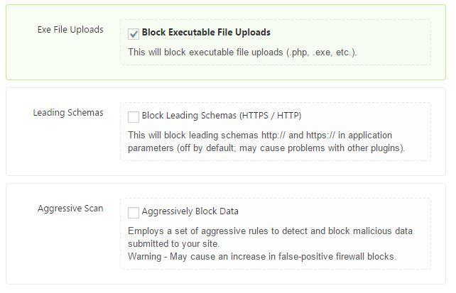 Firewall Options in Shield WordPress Plugin