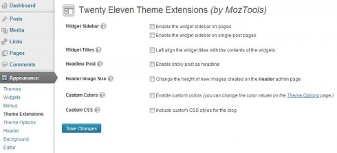 Twenty Eleven Theme Extensions Options