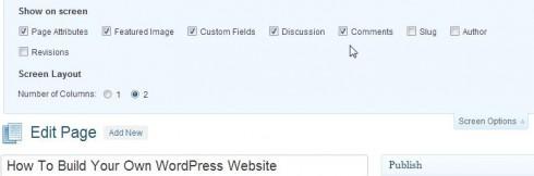 WordPress Screen Display Options