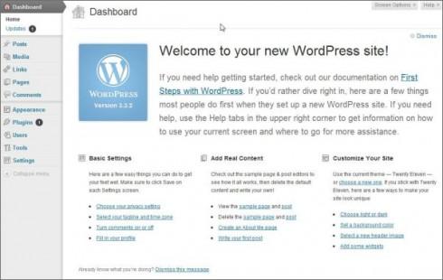 WordPress Software Initial Login