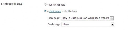 The static homepage settings to make WordPress look a website