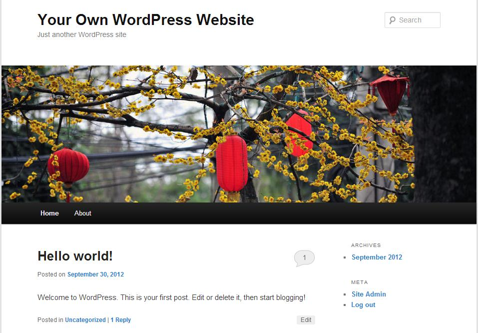 How to Make WordPress Look Like a Website not a Blog